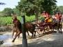 Concours complet Castries 2009