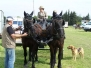 Concours complet Meynes 2009
