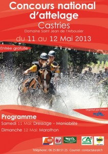 Affiche-Castries-2013