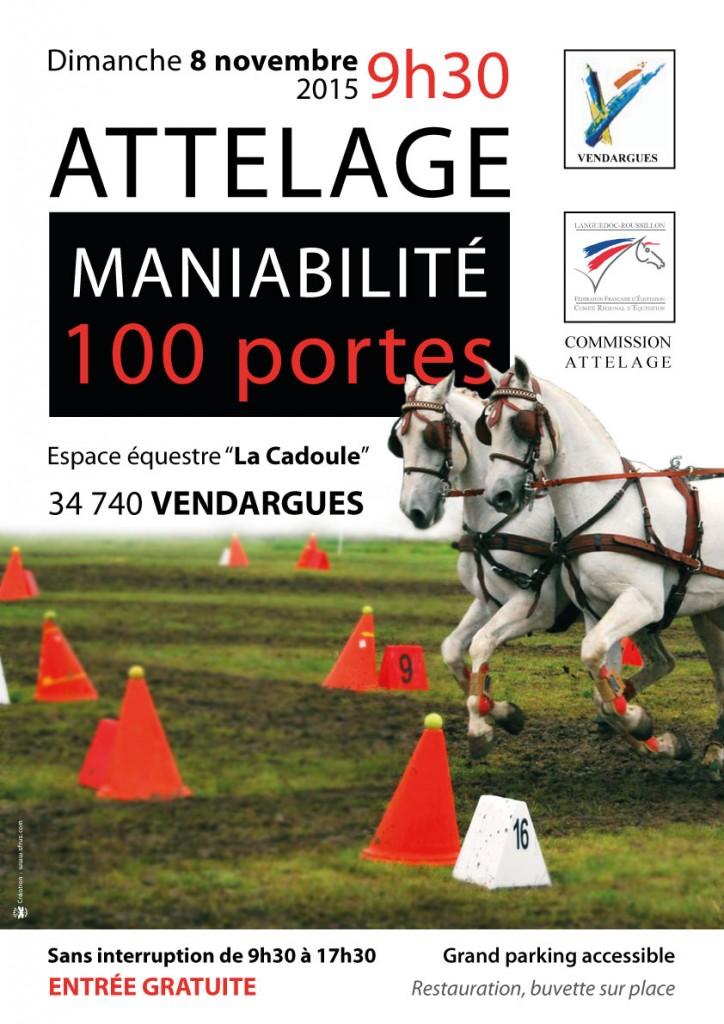 mania-100portes-2015_public1