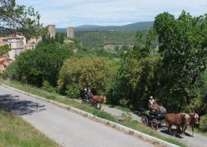 Au pied du Chateau de Ponteves